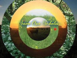 Save Our Scholes