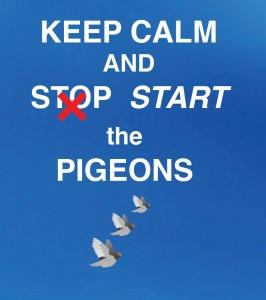 pigeon-bckweb