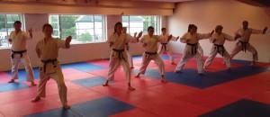 leeds-premier-karate-class
