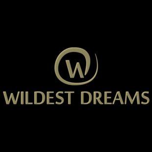 Wildest Dreams – New Year 2018